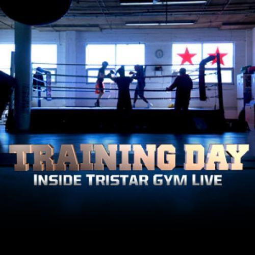 Training Day next episode air date poster