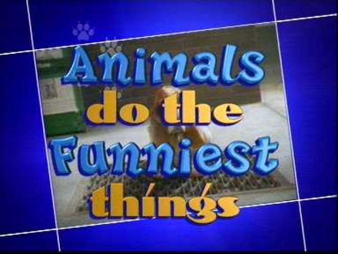 Animals Do The Funniest Things next episode air date poster