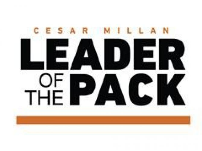 Cesar Millan's Leader of the Pack next episode air date poster