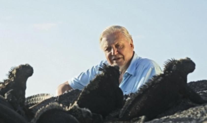 Galapagos with David Attenborough next episode air date poster