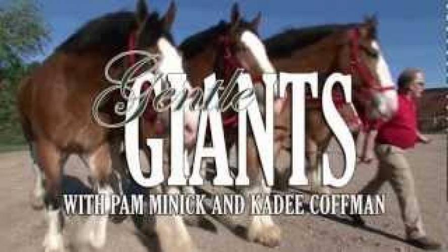 Gentle Giants next episode air date poster