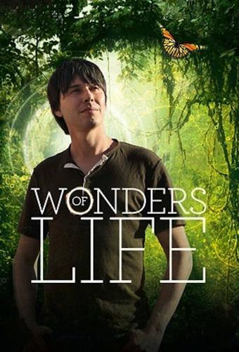 Wonders of Life next episode air date poster