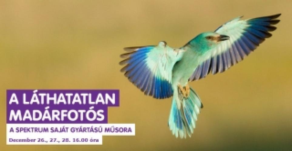 A láthatatlan madárfotós next episode air date poster