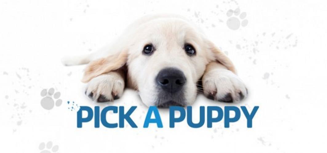 Pick A Puppy next episode air date poster