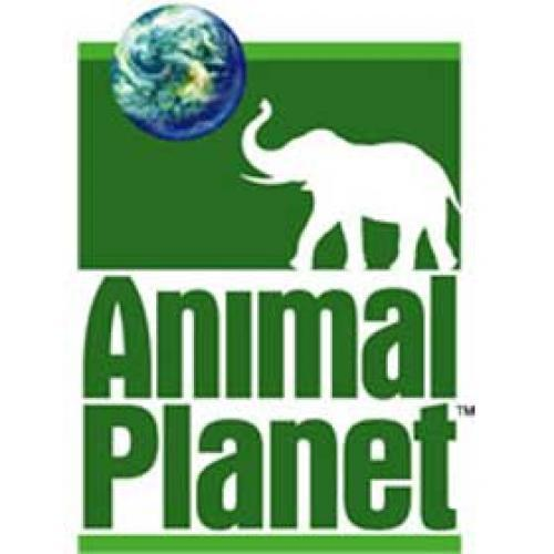 Animal Planet Specials next episode air date poster