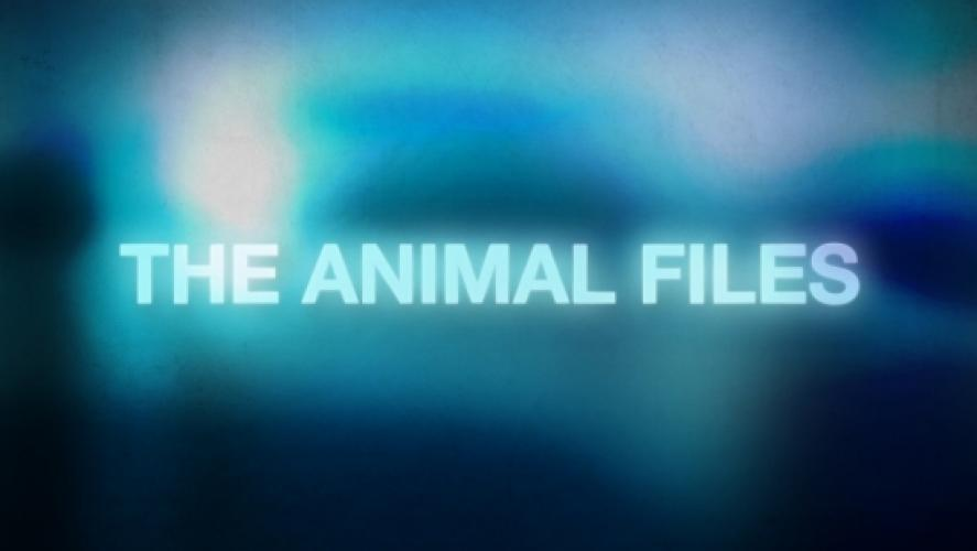 The Animal Files next episode air date poster