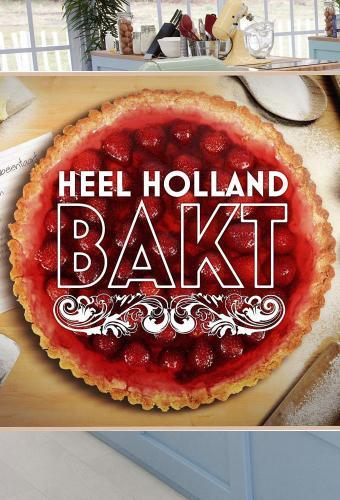 Heel Holland Bakt next episode air date poster