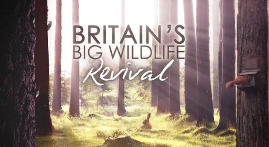Britain's Big Wildlife Revival next episode air date poster