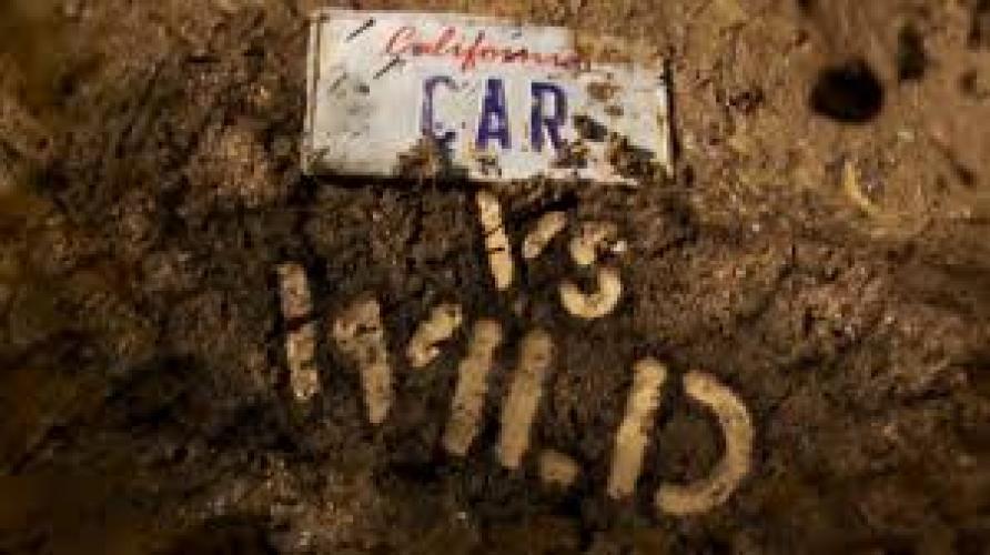 Car vs. Wild next episode air date poster