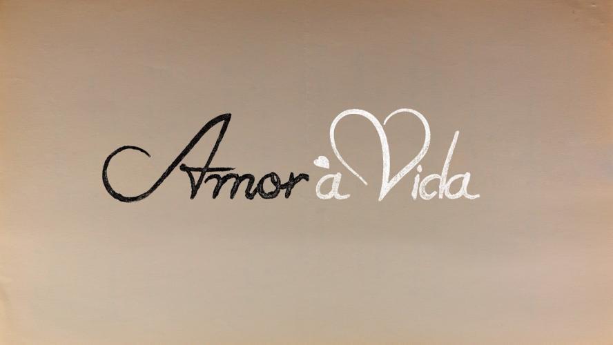 Amor à Vida next episode air date poster