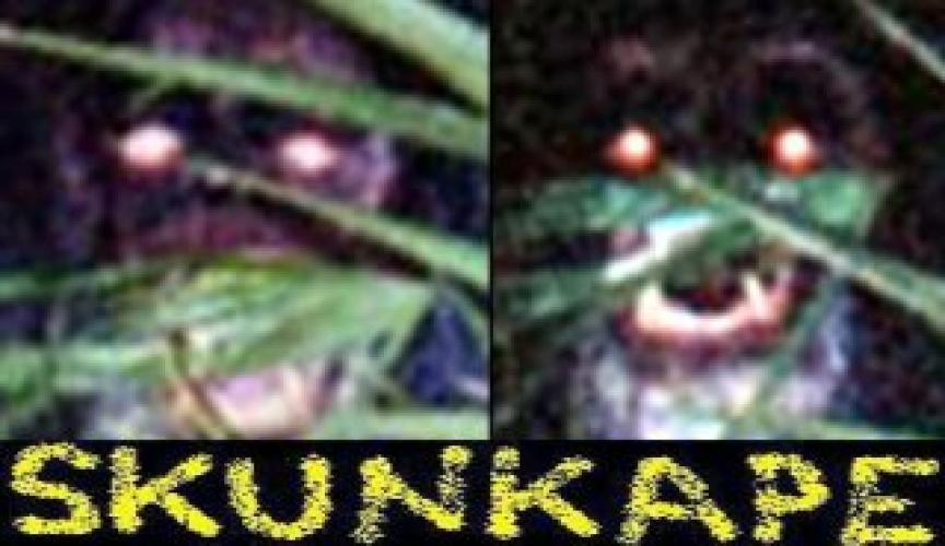 Skunk Ape next episode air date poster