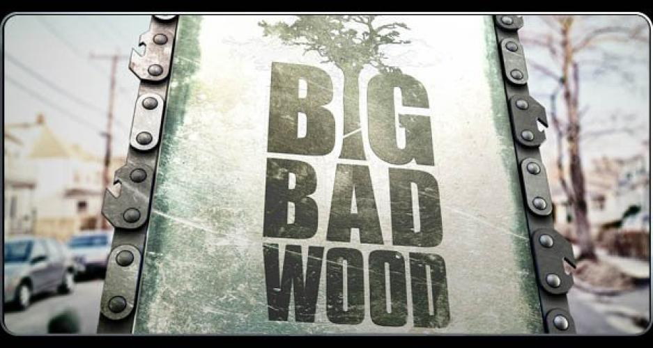 Big Bad Wood next episode air date poster