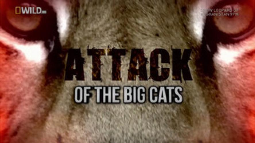 Attack of the Big Cats next episode air date poster
