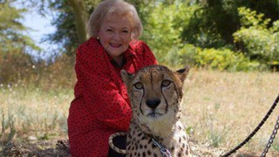 Betty White Goes Wild! next episode air date poster