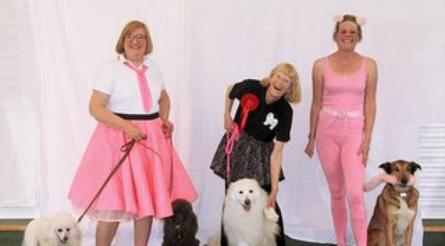 Dog Dancing School next episode air date poster