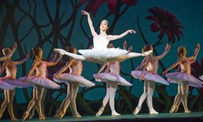 The Royal Ballet: Don Quixote next episode air date poster