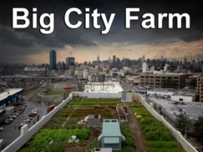 Big City Farm next episode air date poster