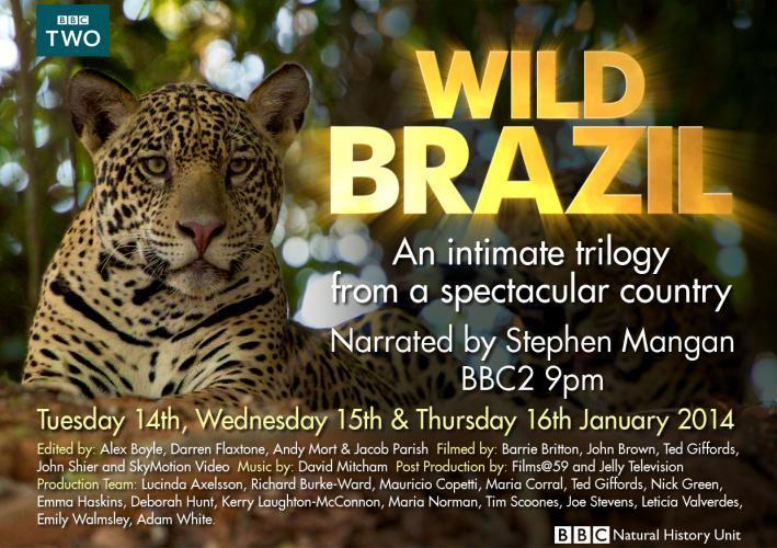 Wild Brazil next episode air date poster