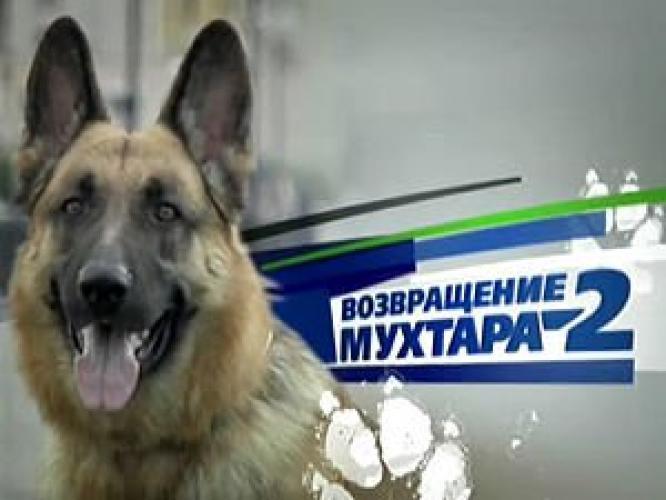 Возвращение Мухтара next episode air date poster