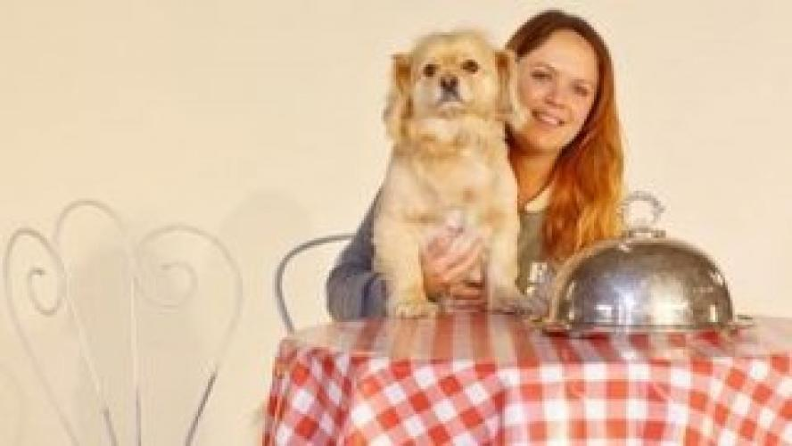 A Dog's Dinner: The Truth About Dog Food next episode air date poster