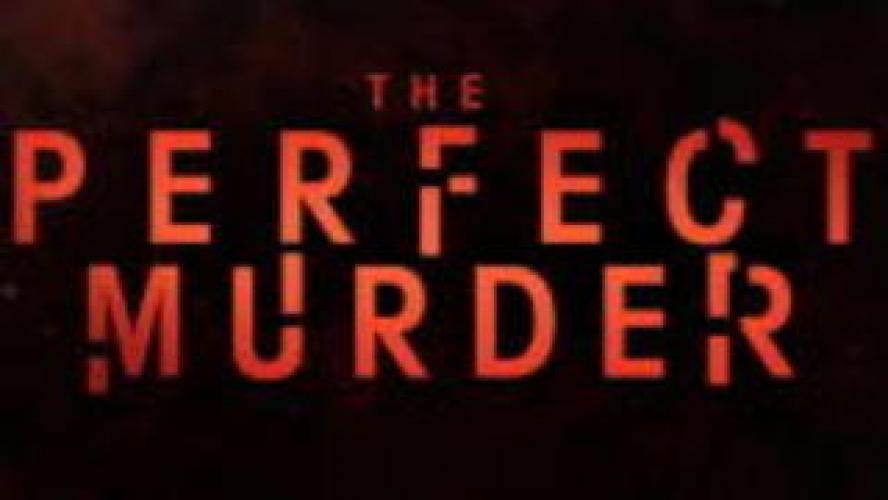 The Perfect Murder next episode air date poster