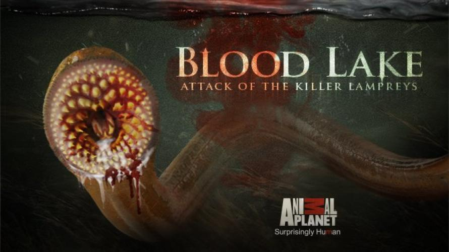 Blood Lake: Attack of the Killer Lampreys next episode air date poster