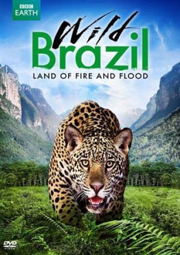 Wild Brazil (US) next episode air date poster