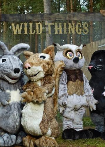 Wild Things next episode air date poster