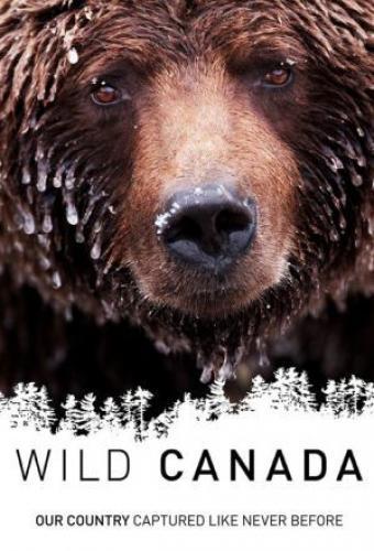 Wild Canada next episode air date poster