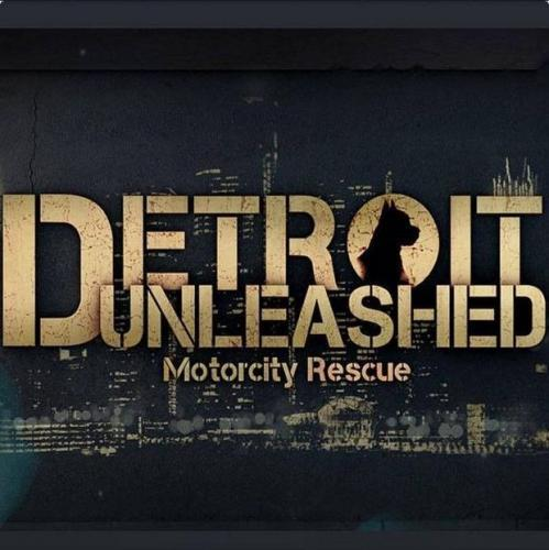 Detroit Unleashed: Motorcity Rescue next episode air date poster