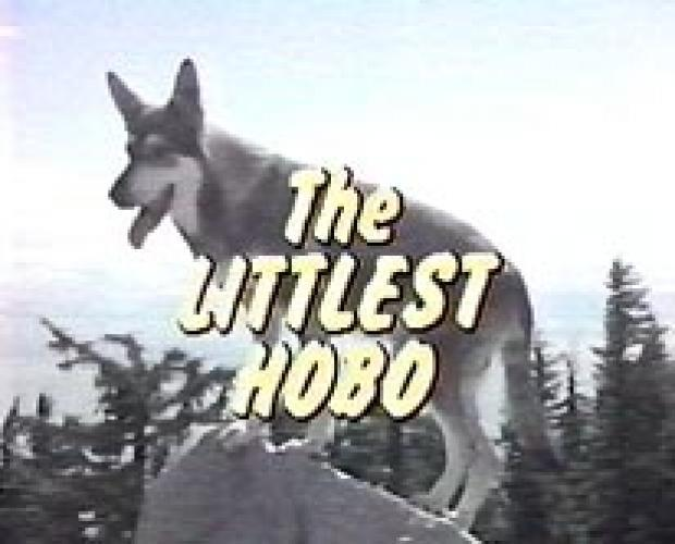 The Littlest Hobo (1979) next episode air date poster