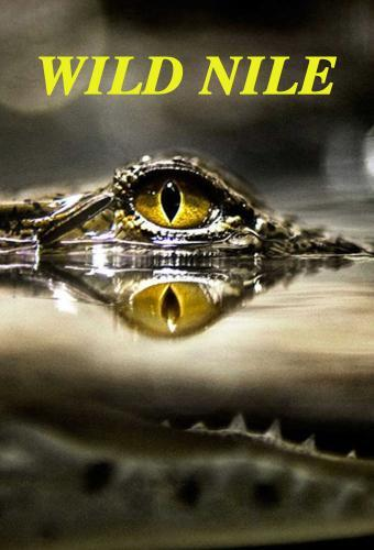 Wild Nile next episode air date poster