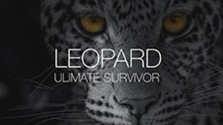 Leopard: Ultimate Survivor next episode air date poster