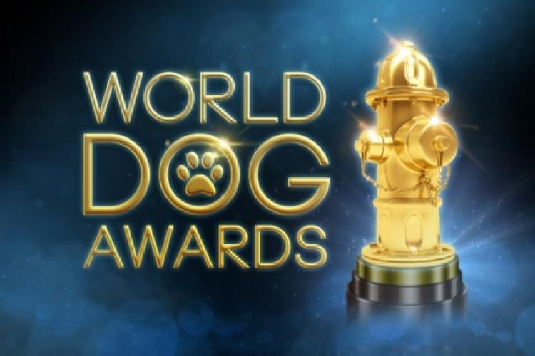 The World Dog Awards next episode air date poster