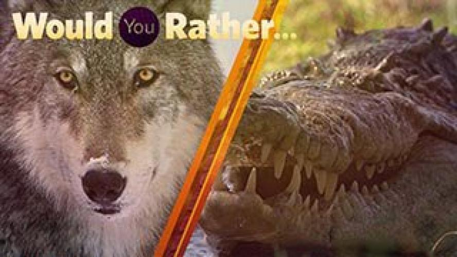 Would You Rather... next episode air date poster