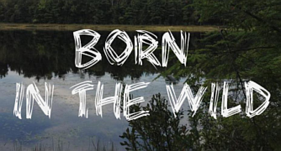 Born in the Wild (Lifetime) next episode air date poster