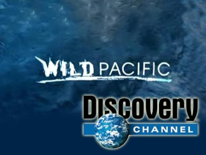 Wild Pacific next episode air date poster