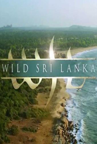 Wild Sri Lanka next episode air date poster