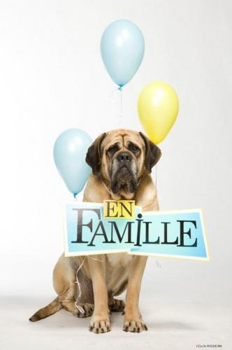En Famille next episode air date poster