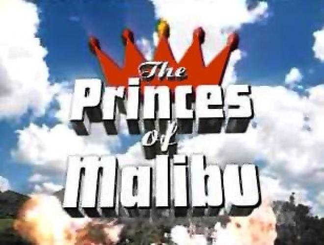 The Princes of Malibu next episode air date poster