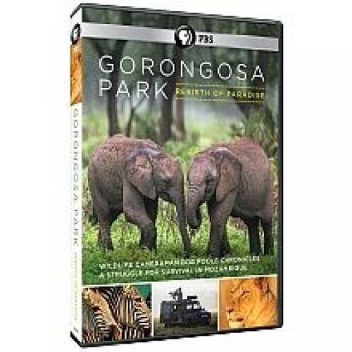 Gorongosa Park: Rebirth of Paradise next episode air date poster