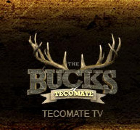 The Bucks of Tecomate next episode air date poster