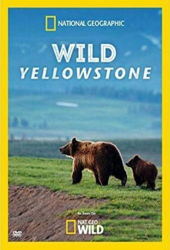 Wild Yellowstone next episode air date poster