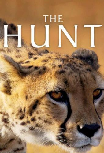 The Hunt next episode air date poster
