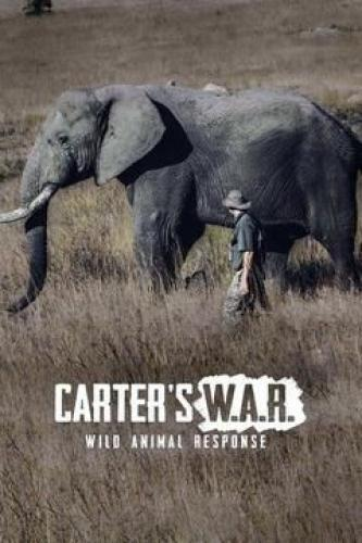 Carter's W.A.R. (Wild Animal Response) next episode air date poster