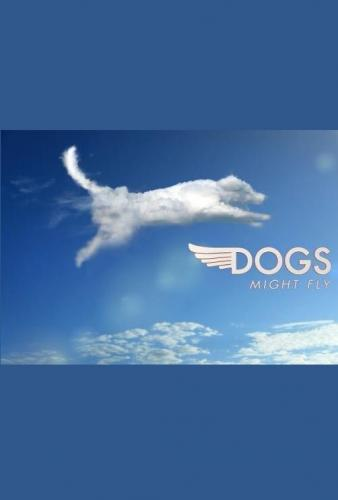 Dogs Might Fly next episode air date poster