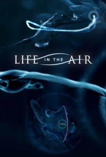Life in the Air next episode air date poster