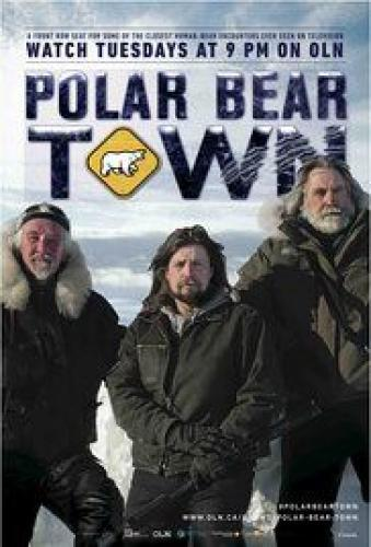 Polar Bear Town next episode air date poster