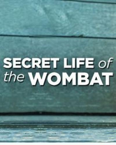 Secret Life of the Wombat next episode air date poster