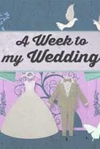 A Week to My Wedding next episode air date poster